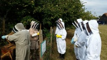 Chelmsford Beekeepers at apiary